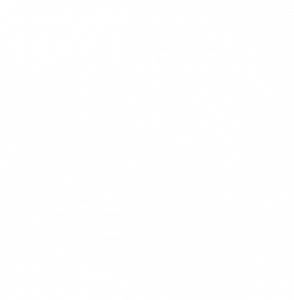 All In Leader Logo